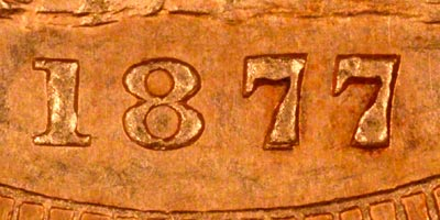 Close Up of Date
